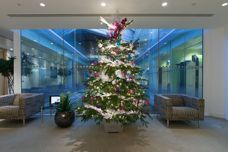 Christmas trees for offices covent garden plants for Office christmas trees