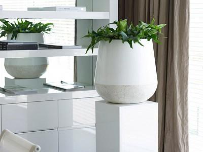 Bordo Planter White